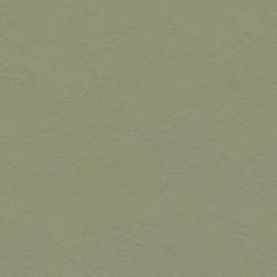 MARMOLEUM CLICK - 333355 rosemary green (0,63 m2 / cutie)